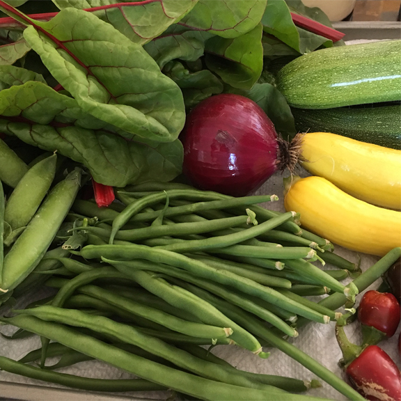 Image of veggies from the garden